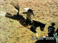 Classic Ride, Saddle Bronc Rider 2