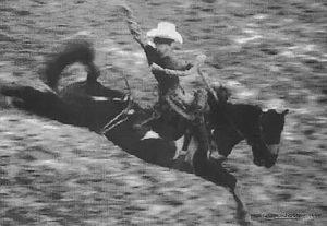 The Rodeo Series Digital Stills
