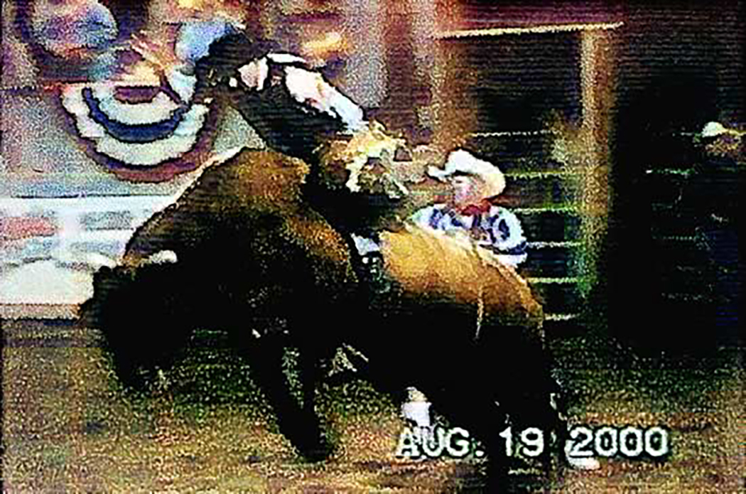 Guarding Closely, Rodeo Clown 1