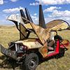 Burning Triceratops - Burning Man 2010, 2011